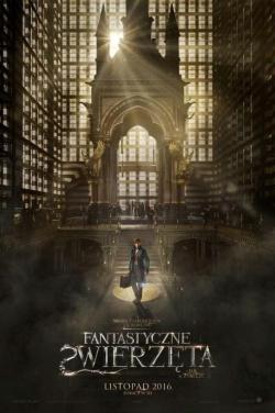 Miniatura plakatu filmu Fantastic Beasts and Where to Find Them