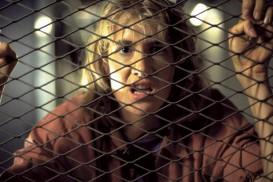 Jurassic Park (1993) - Laura Dern