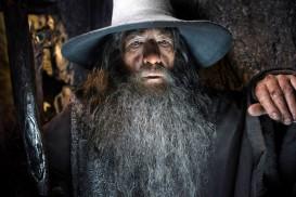 The Hobbit: The Desolation of Smaug (2013) - Ian McKellen