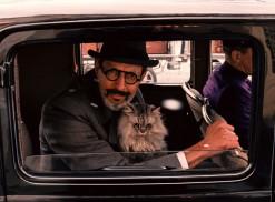 The Grand Budapest Hotel (2014) - Jeff Goldblum