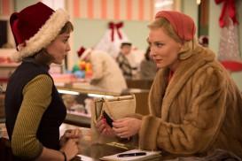 Carol (2015) - Rooney Mara, Cate Blanchett