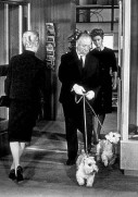 The Birds (1963) - Alfred Hitchcock, Tippi Hedren