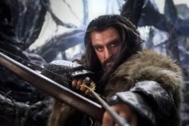 The Hobbit: The Desolation of Smaug (2013) - Richard Armitage