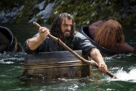 The Hobbit: The Desolation of Smaug (2013) - Richard Armitage, Stephen Hunter