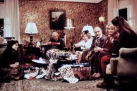 While You Were Sleeping (1995) - Micole Mercurio, Monica Keena, Sandra Bullock, Peter Boyle, Jack Warden, Glynis Johns